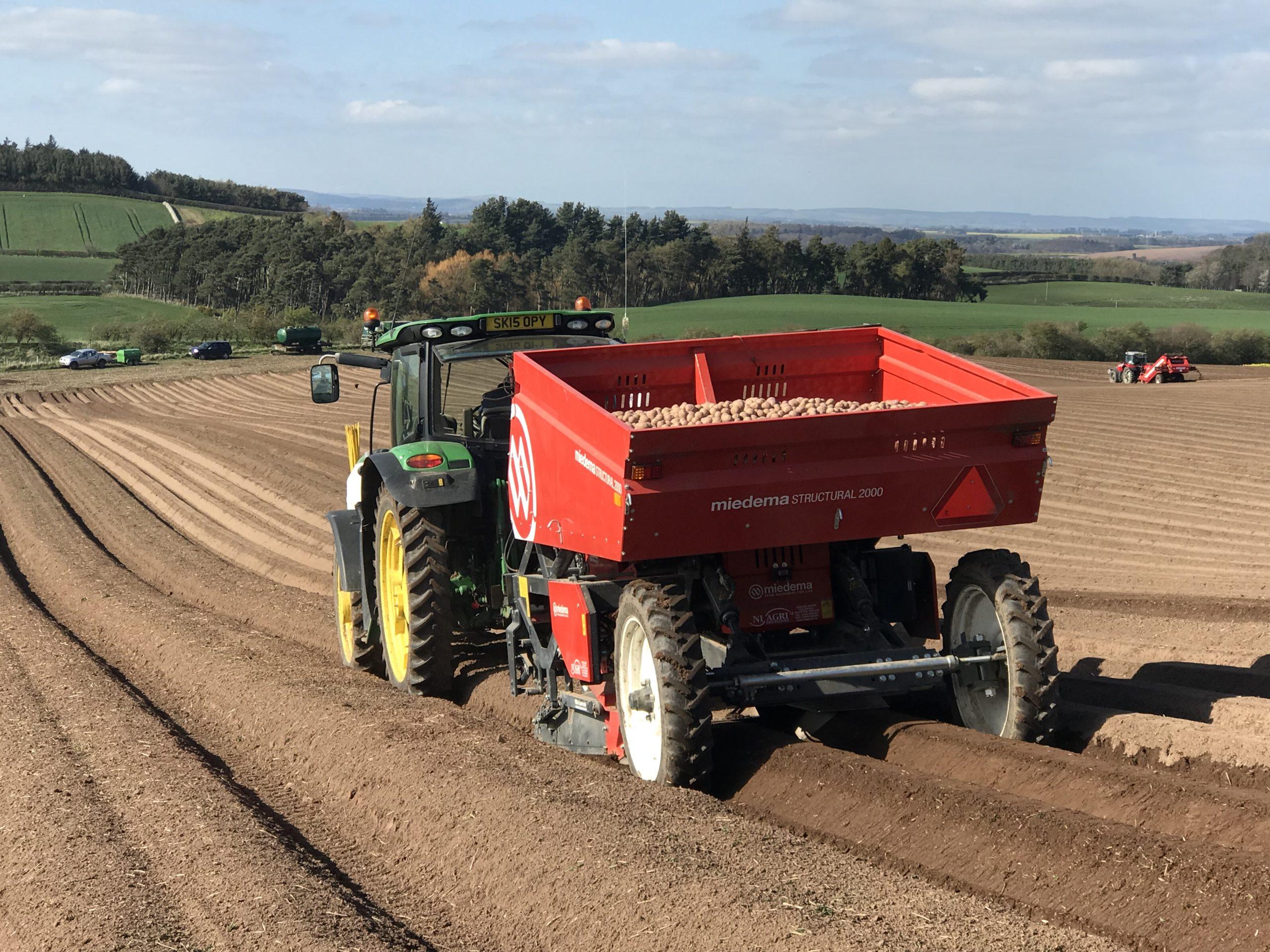 Tractor in potato field